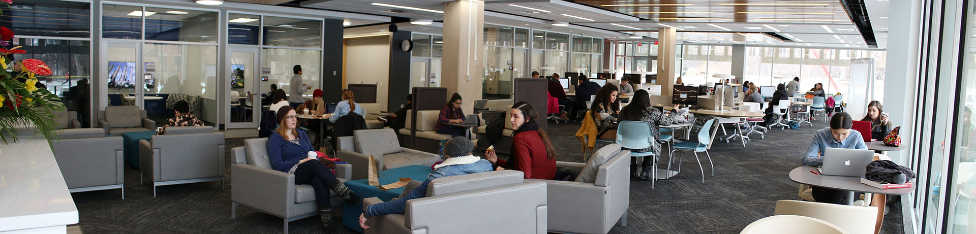 Students study in the Adele Hall Learning Commons