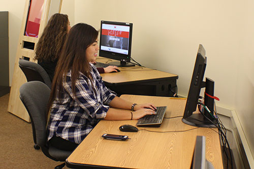 Photo of students using the computer workstations